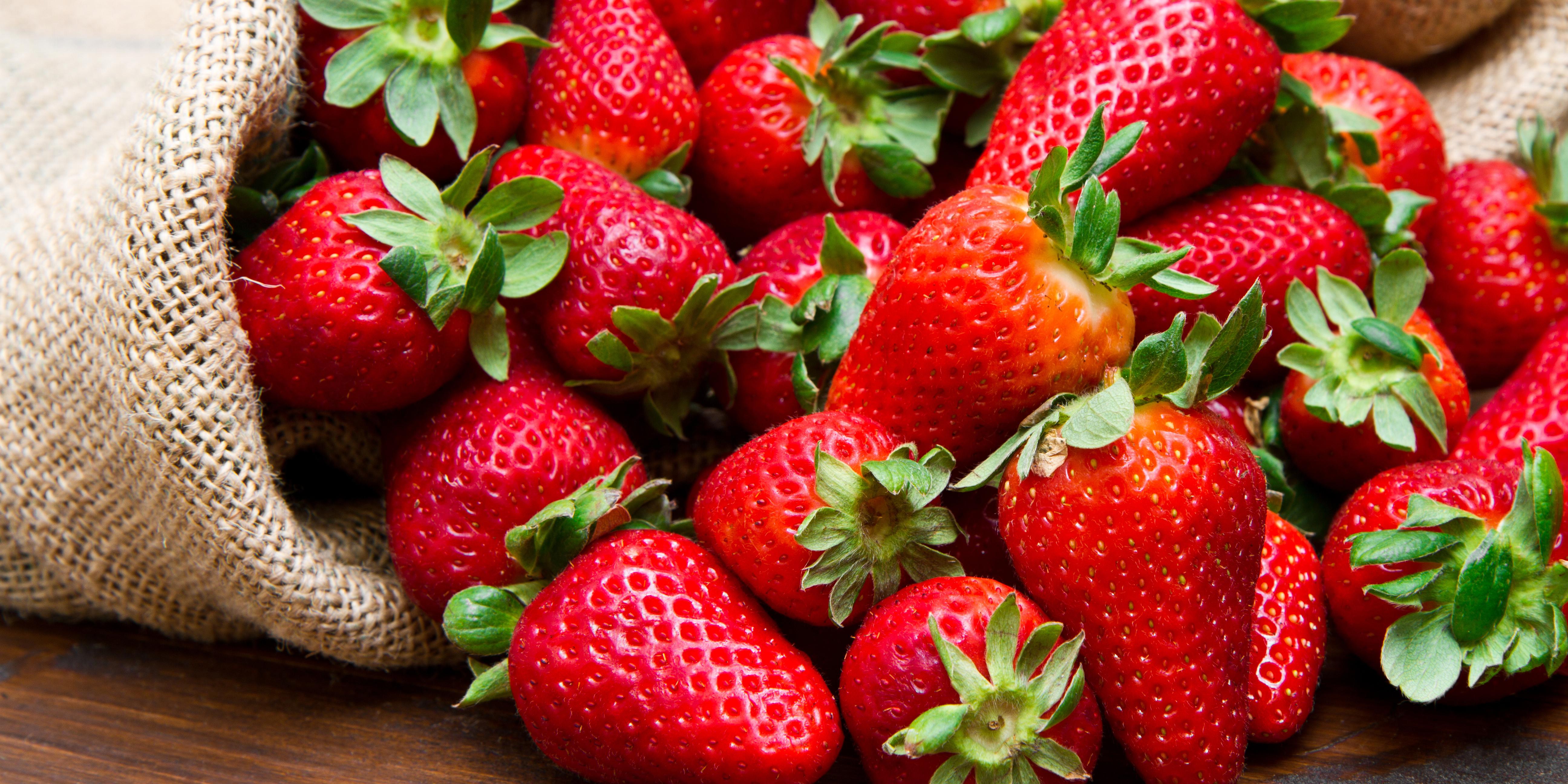 Erdbeeren – Tipps und Tricks rund um Anbau und Ernte
