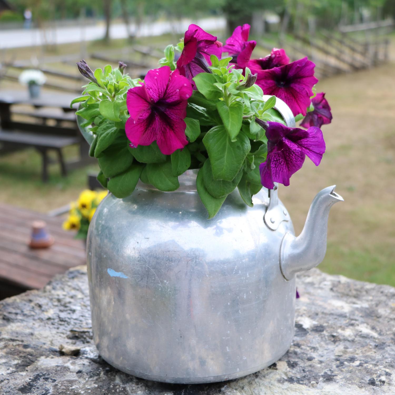 Mit Upcycling zum kreativen Garten: Diese Deko bringt Abwechslung in den Outdoor-Bereich
