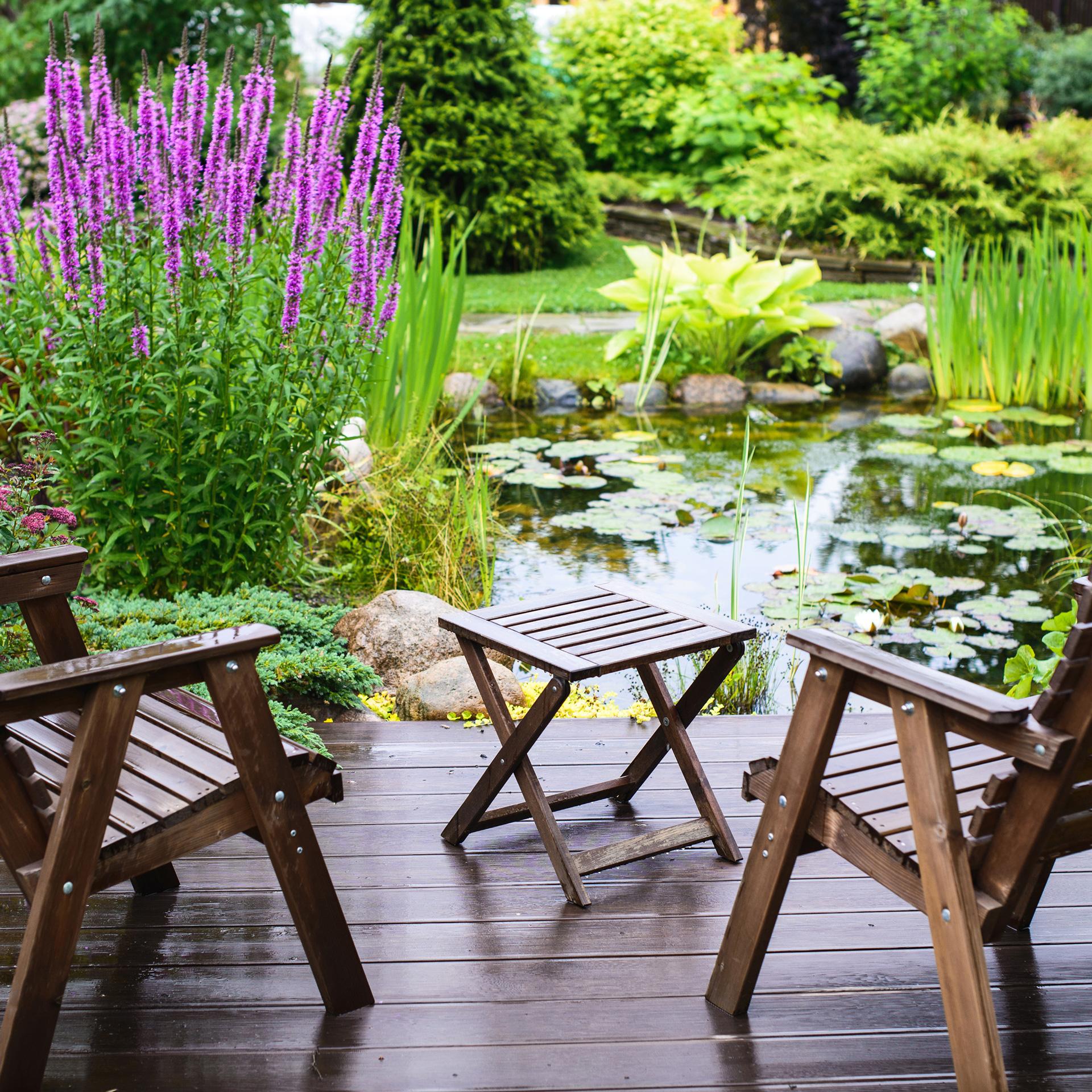 Gartenteich mit Teichschale anlegen - in 5 Schritten