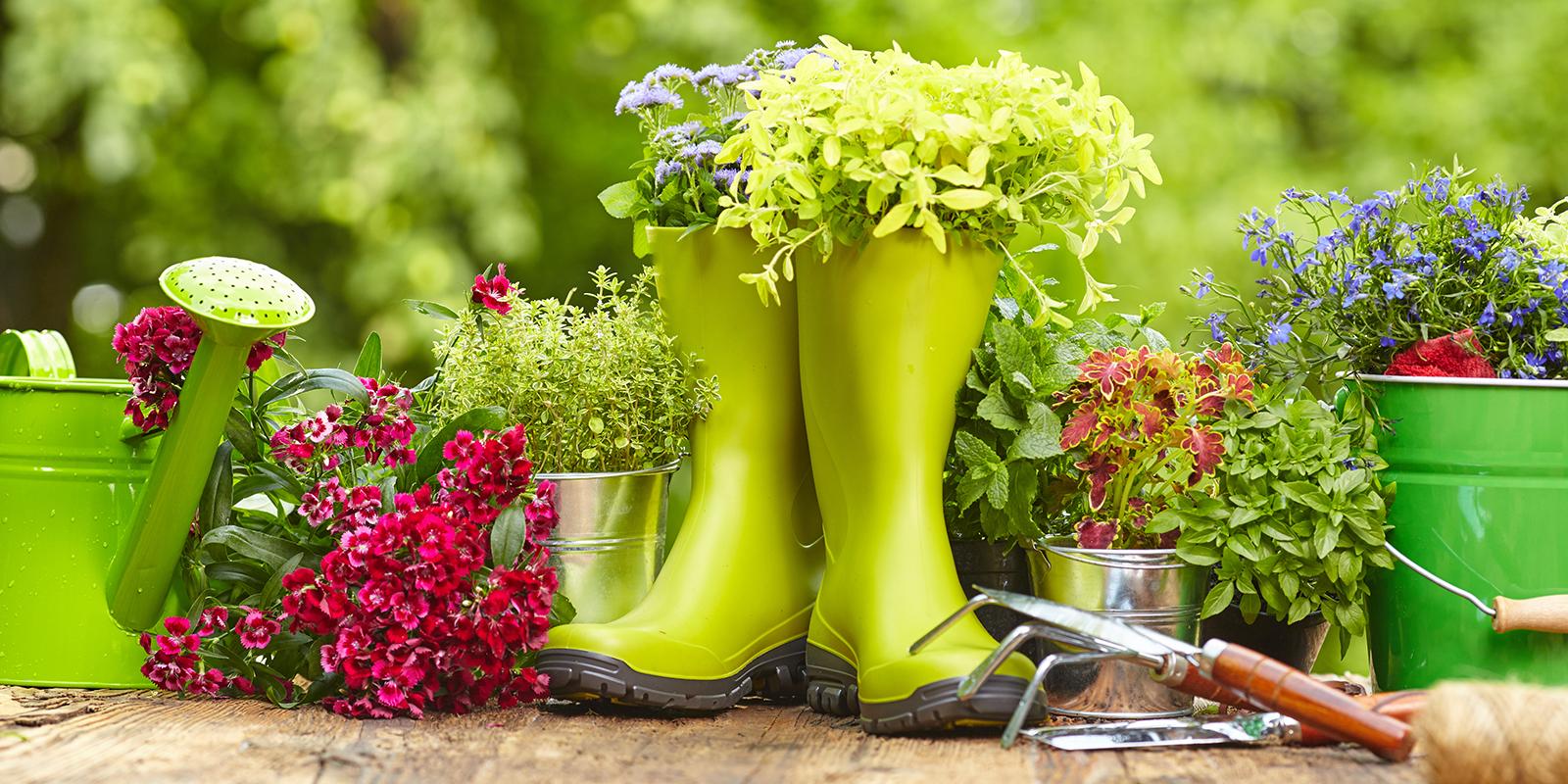 5 Frühlings-Trends für deinen Garten